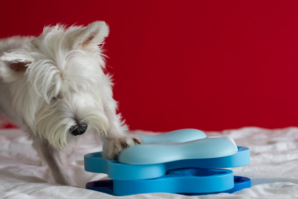 Nina Ottosson Dog Tornado IQ Toy | Vanillapup Picks