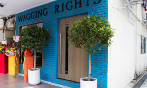 Wagging Rights Shopfront | Vanillapup