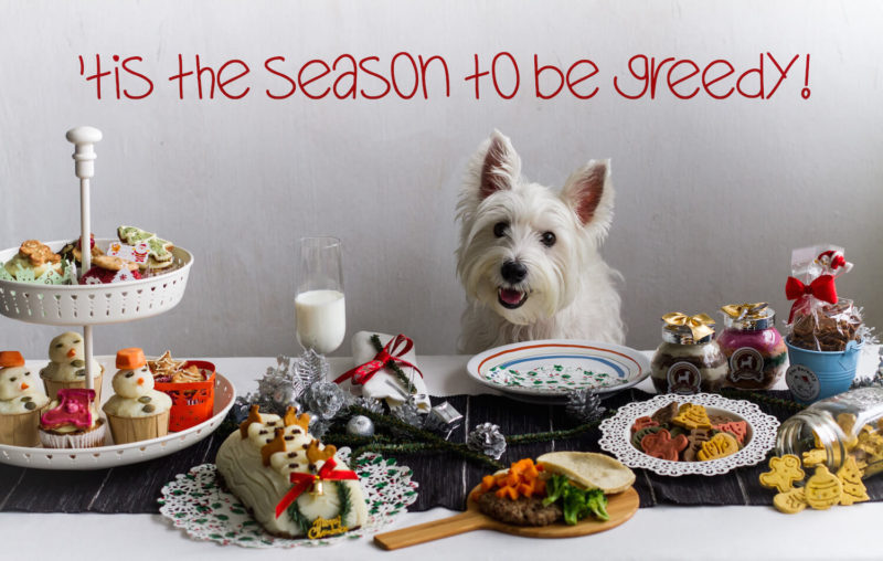 Vanillapup Dog Christmas Table Spread Special | Vanillapup