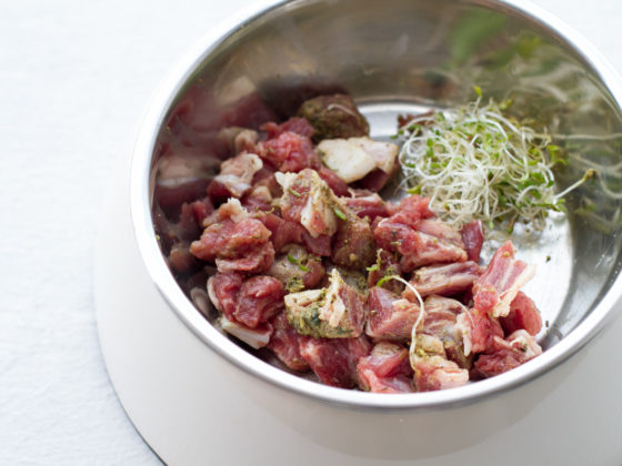 How to Prepare Raw Diet for Dogs | Vanillapup