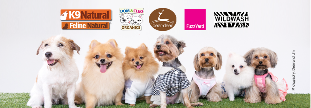 Great Places to Shop for Dogs - Howlistic Life | Vanillapup