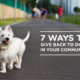 7 Ways to Give Back to Dogs in Your Community | Vanillapup