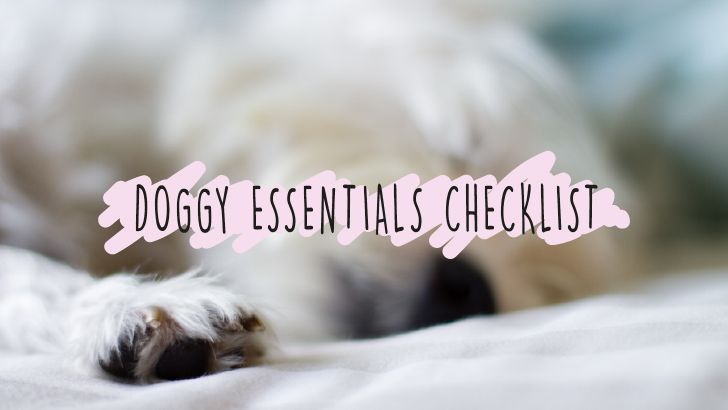 Dog Essentials Banner | Vanillapup