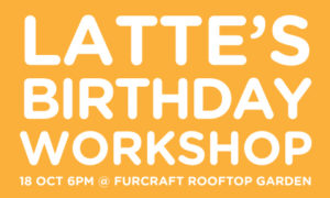 Latte's Birthday Workshop Banner | Vanillapup