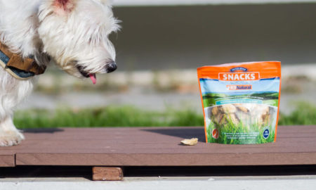K9 Natural Treats Mussels | Vanillapup