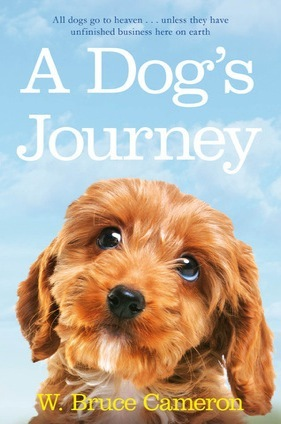 Books for Dog Lovers - A Dogs Journey | Vanillapup