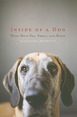 Books for Dog Lovers - Inside a Dog | Vanillapup
