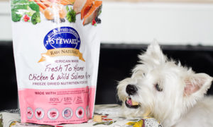 Steward Raw Naturals Dog Food | Vanillapup