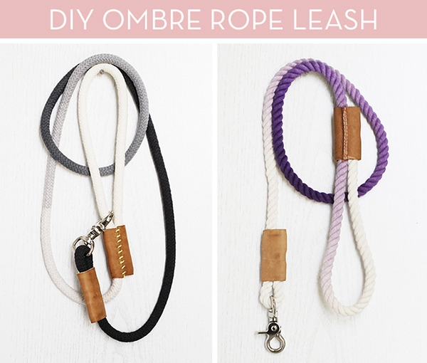 DIY Dog Rope Leash Curbly | Vanillapup