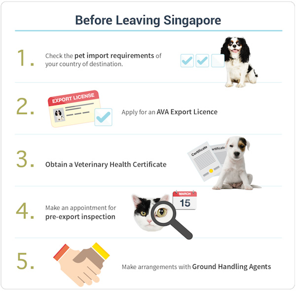 Pet travel: Singapore AVA Export Dog Requirements | Vanillapup