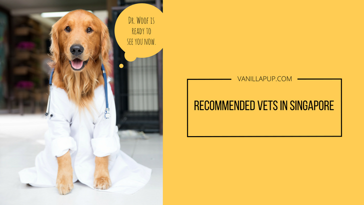 Recommended List of Singapore Vets | Vanillapup