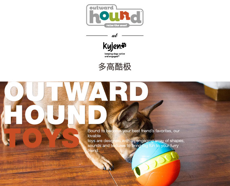 Taobao Outward Hound Puzzle Toys | Vanillapup