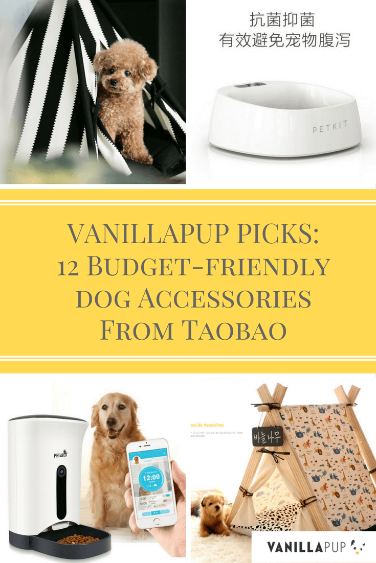 12 Budget-friendly Accessories From Taobao For the Modern Dog | Vanillapup