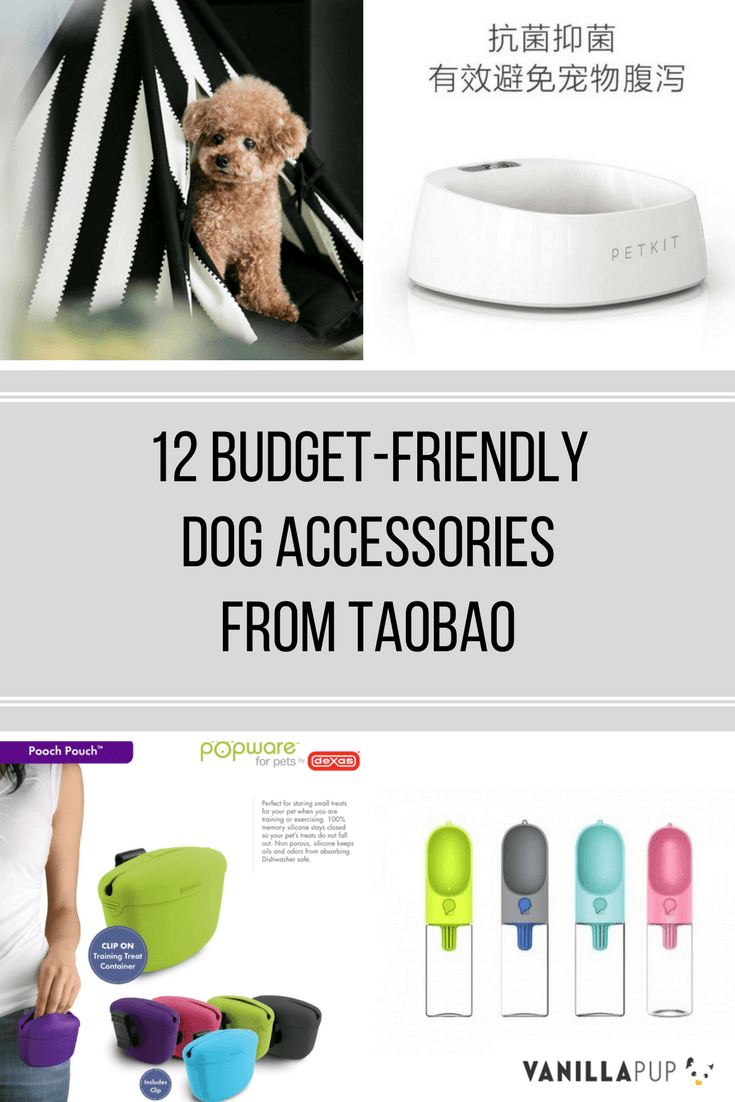 Best Taobao Dog Accessories | Vanillapup