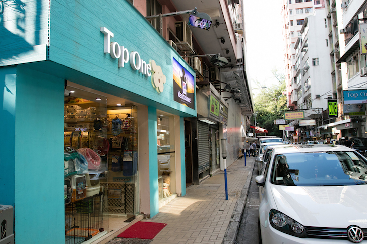 Top One Pet Shop Hong Kong | Vanillapup