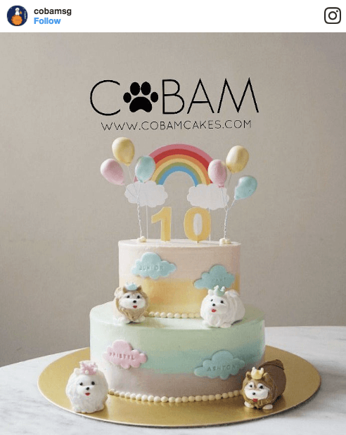 CoBam Dog Tiered Cake | Vanillapup