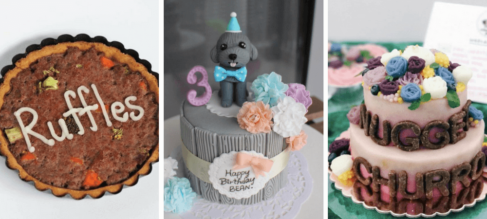 9 Dog Bakeries To Buy Your Dogs Next Birthday Cake Vanillapup