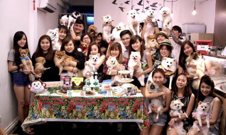 Bailey Birthday Party Group Photo | Vanillapup