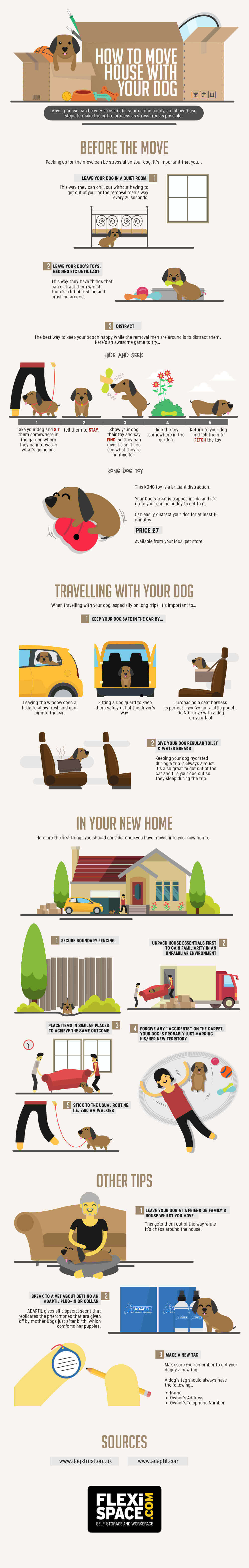 Infographic: Moving Home with Your Dog