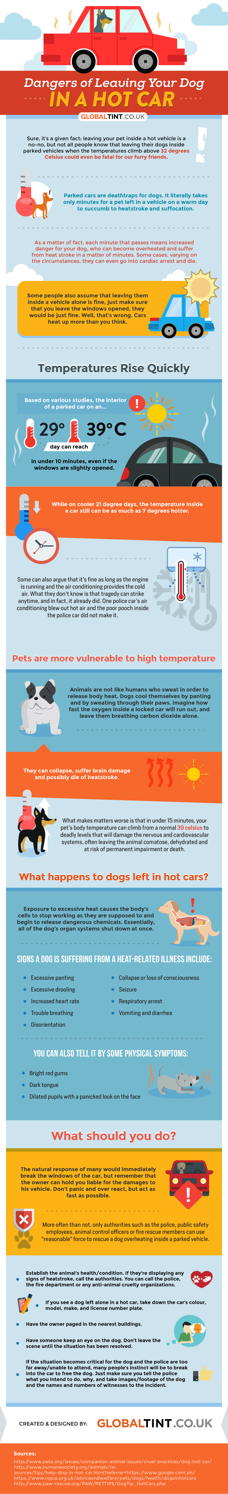 Infographic: Dangers of Leaving Your Dog In A Hot Car | Vanillapup