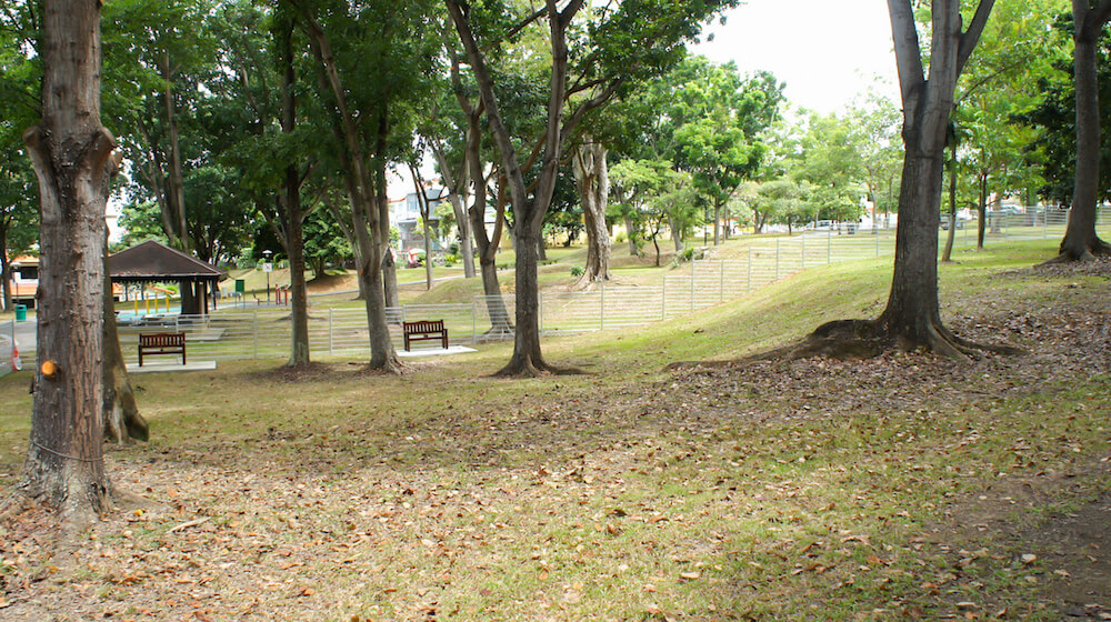 Lengkong Enam Interim Park Dog Run | Vanillapup