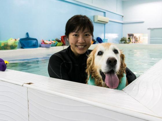 Lynn and Maximus | VanillapupLynn and Maximus at Canine Wellness and Rehab Centre | Vanillapup