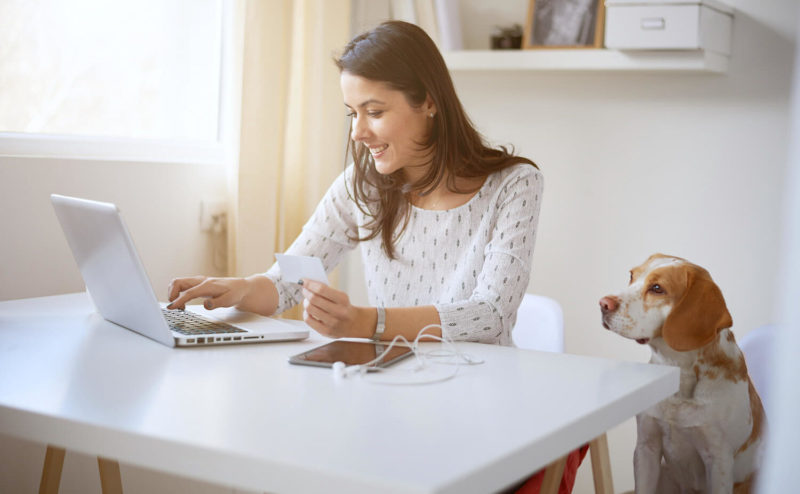 Best Credit Cards for Pet Expenses | Vanillapup