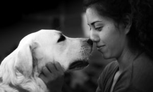 Coping With the Death of a Pet | Vanillapup