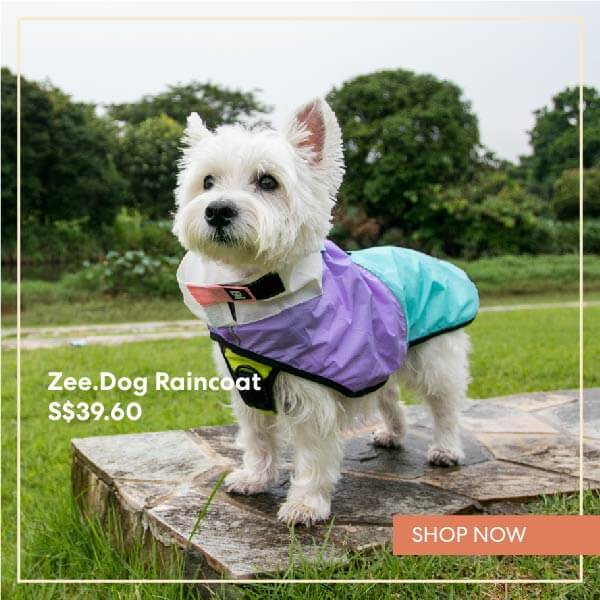 Zee Dog Raincoat | Shop Vanillapup